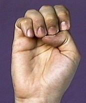 Sign Language in Alphabetical Order