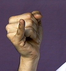 American Sign Language  Handshapes