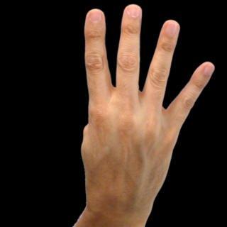 quotnumbersquot asl american sign language